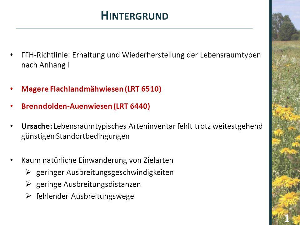 H INTERGRUND FFH-Richtlinie: Erhaltung und Wiederherstellung der Lebensraumtypen nach Anhang I Magere Flachlandmähwiesen (LRT 6510) Brenndolden-Auenwi