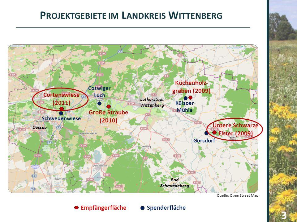 Gorsdorf Untere Schwarze Elster (2009) Külsoer Mühle Küchenholz- graben (2009) Große Straube (2010) Coswiger Luch Schwedenwiese Cortenswiese (2011) P