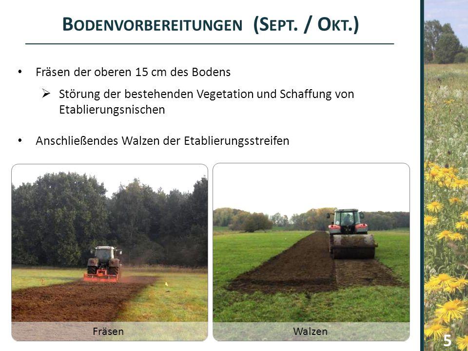 B ODENVORBEREITUNGEN (S EPT. / O KT.) Fräsen der oberen 15 cm des Bodens  Störung der bestehenden Vegetation und Schaffung von Etablierungsnischen An