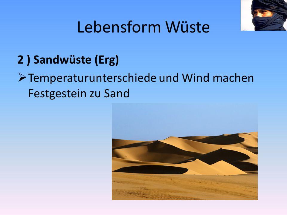 Lebensform Wüste 2 ) Sandwüste (Erg)  Temperaturunterschiede und Wind machen Festgestein zu Sand