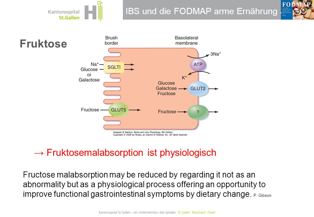 IBS und die FODMAP arme Ernährung Fruktose → Fruktosemalabsorption ist physiologisch Fructose malabsorption may be reduced by regarding it not as an a