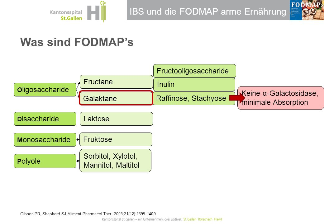 IBS und die FODMAP arme Ernährung Raffinose, Stachyose Was sind FODMAP's Gibson PR, Shepherd SJ Aliment Pharmacol Ther. 2005;21(12):1399-1409 O ligosa