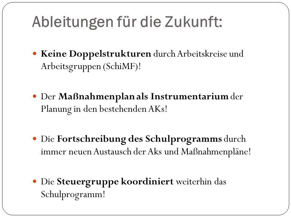 Ableitungen für die Zukunft: Keine Doppelstrukturen durch Arbeitskreise und Arbeitsgruppen (SchiMF).