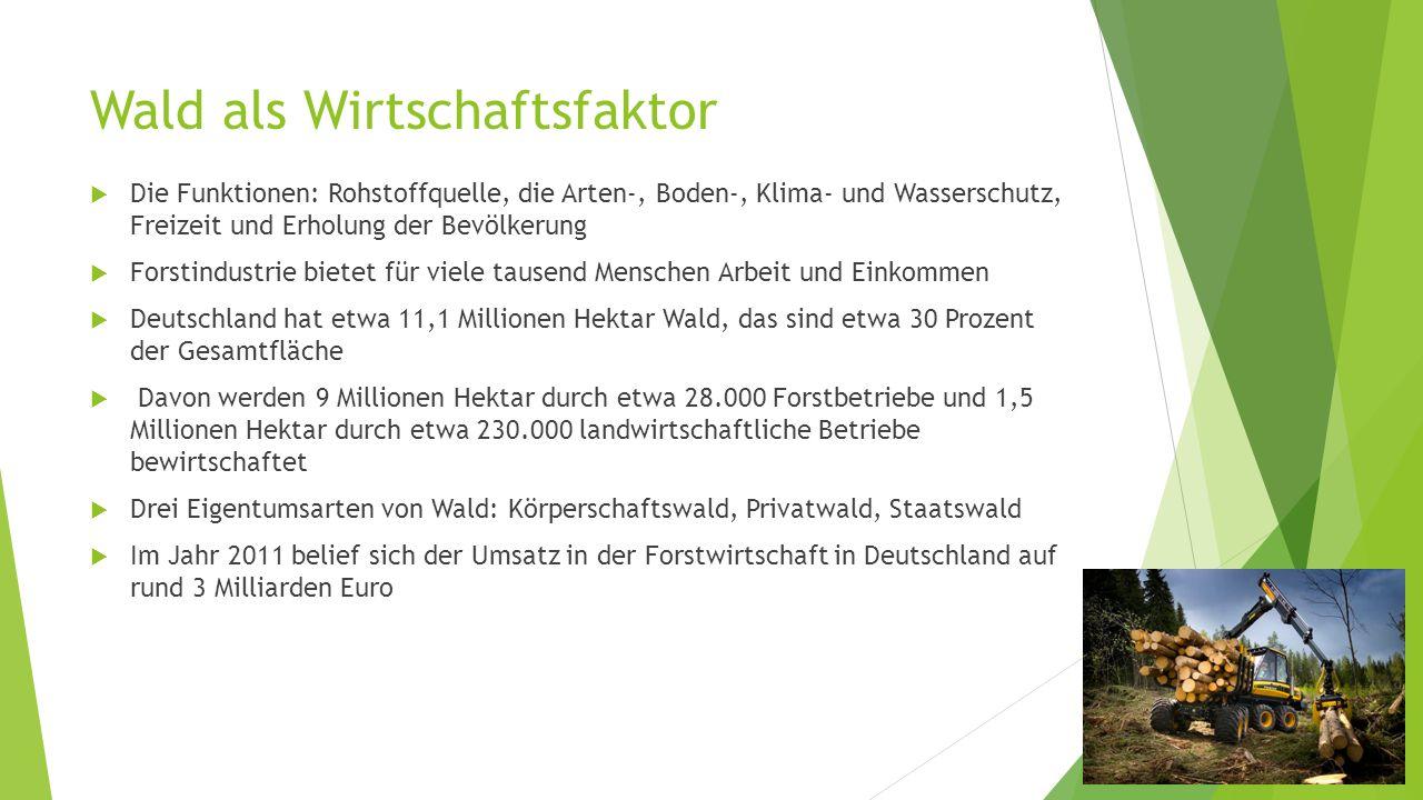 Wald als Wirtschaftsfaktor  Die Funktionen: Rohstoffquelle, die Arten-, Boden-, Klima- und Wasserschutz, Freizeit und Erholung der Bevölkerung  Fors
