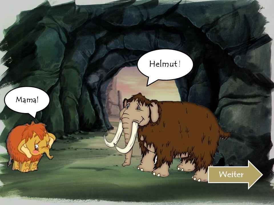 Helmut ! Mama! Weiter