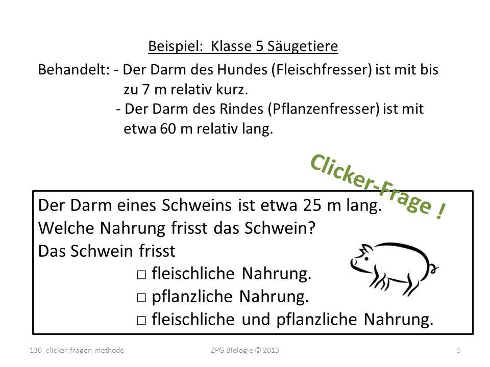 Beispiel: Klasse 5 Säugetiere Behandelt: - Der Darm des Hundes (Fleischfresser) ist mit bis zu 7 m relativ kurz. - Der Darm des Rindes (Pflanzenfresse