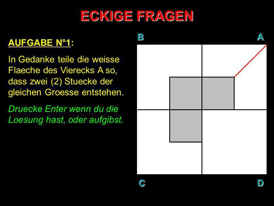 ECKIGE FRAGEN BAD C AUFGABE N°1: In Gedanke teile die weisse Flaeche des Vierecks A so, dass zwei (2) Stuecke der gleichen Groesse entstehen. Druecke