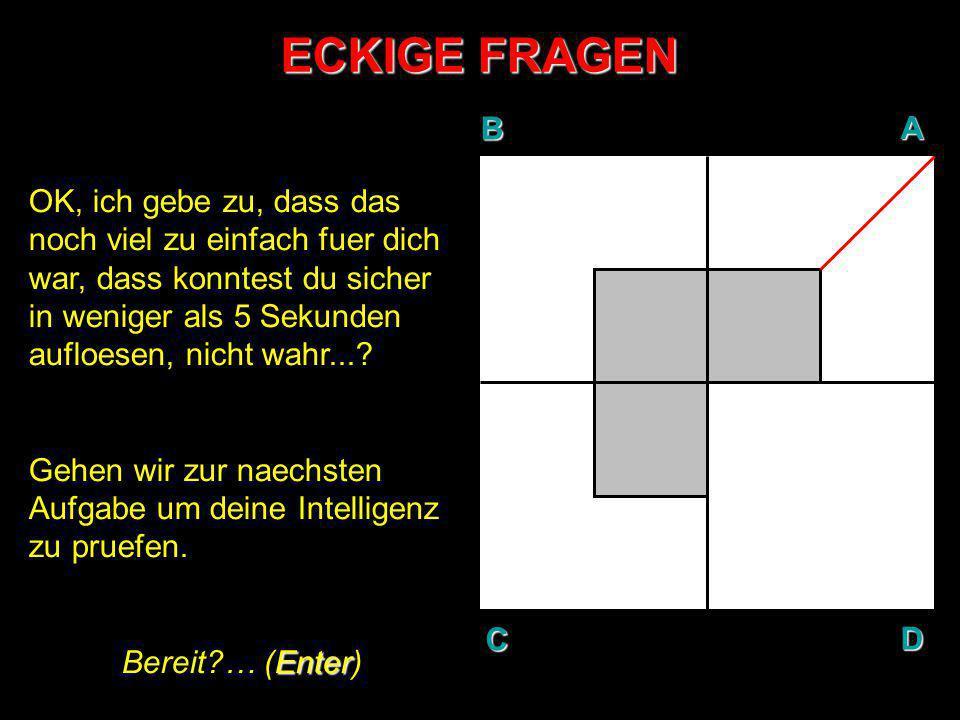 ECKIGE FRAGEN AUFGABE N°2: In Gedanken, teile den weissen Bereich der Flaeche B so, dass drei (3) gleich- grosse Teile entstehen.