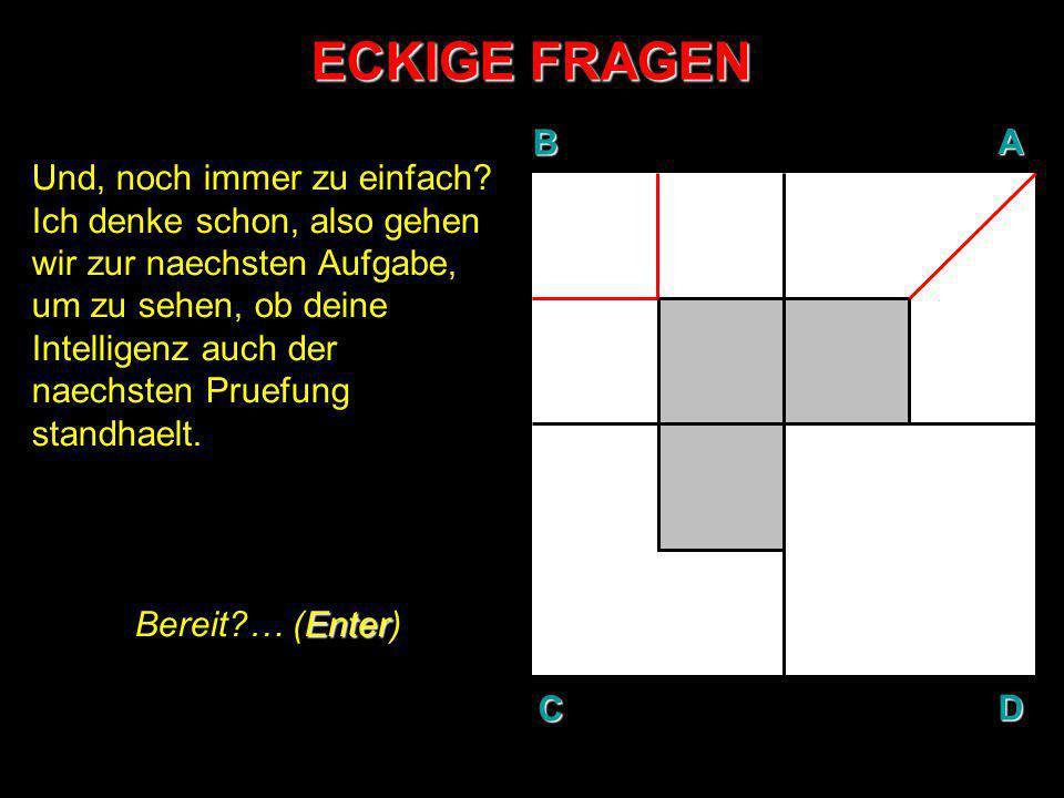 ECKIGE FRAGEN AUFGABE N°3: In Gedanken, teile den weissen Bereich der Flaeche C so, dass 4 gleichgrosse Stuecke entstehen.