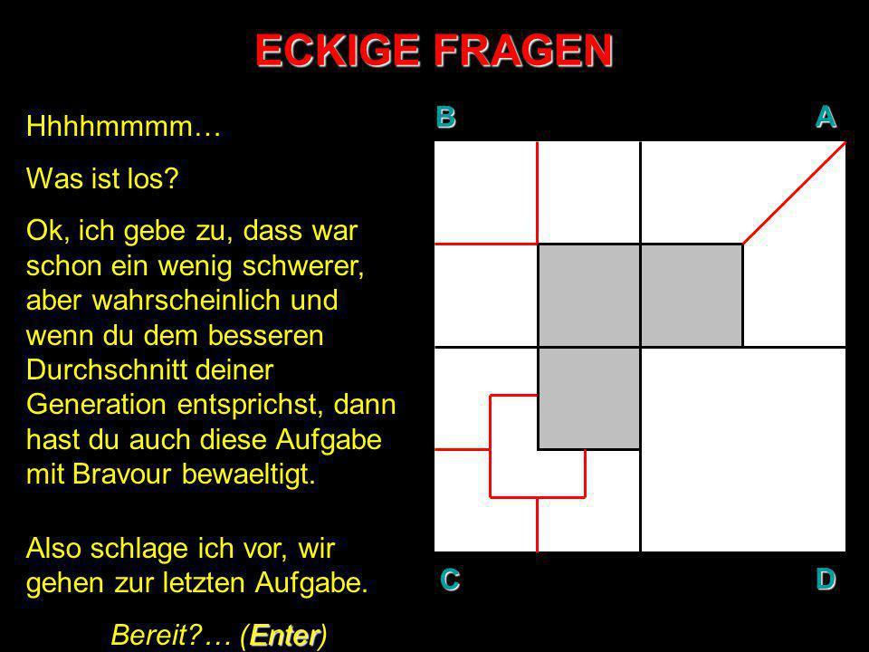ECKIGE FRAGEN AUFGABE N°4: In Gedanken, teile den weissen Bereich der Flaeche D so, dass sieben (7) gleichgrosse Teile entstehen.