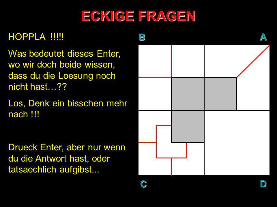 ECKIGE FRAGEN BAD C HOPPLA !!!!! Was bedeutet dieses Enter, wo wir doch beide wissen, dass du die Loesung noch nicht hast…?? Los, Denk ein bisschen me