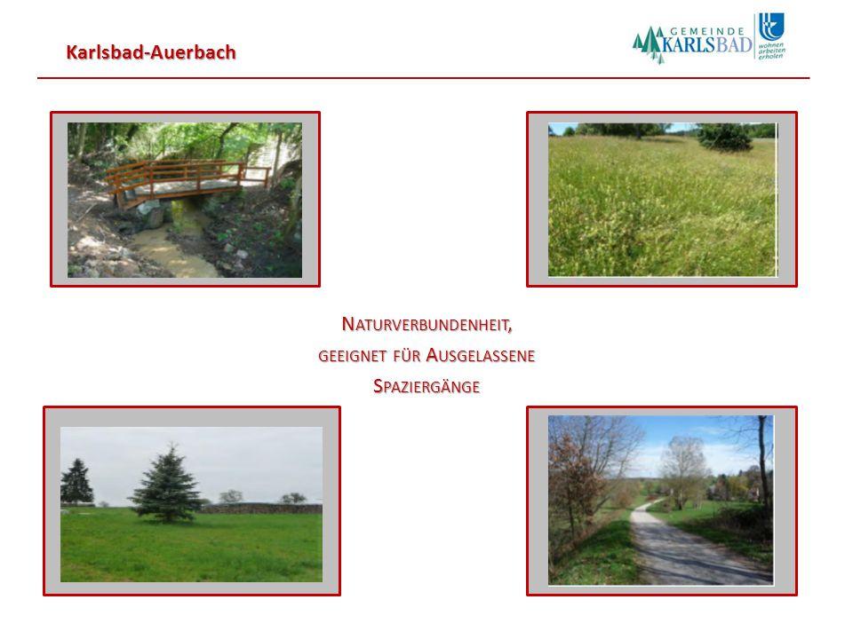 Karlsbad-Auerbach Blick von Osten auf das Baugebiet