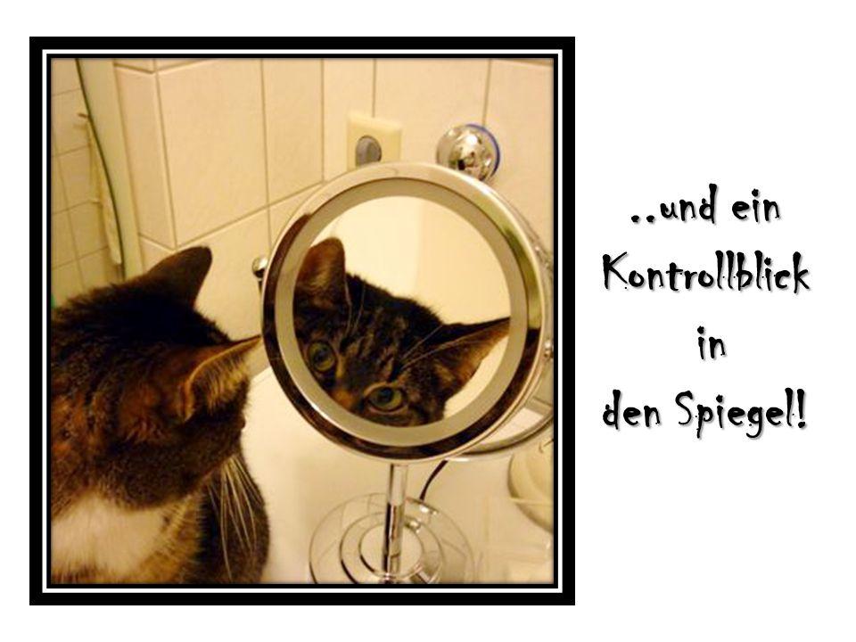 ..und ein Kontrollblick in in den Spiegel!
