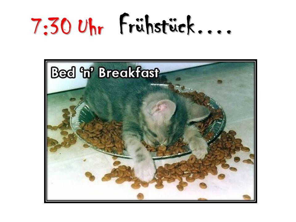 7:30 Uhr Frühstück….