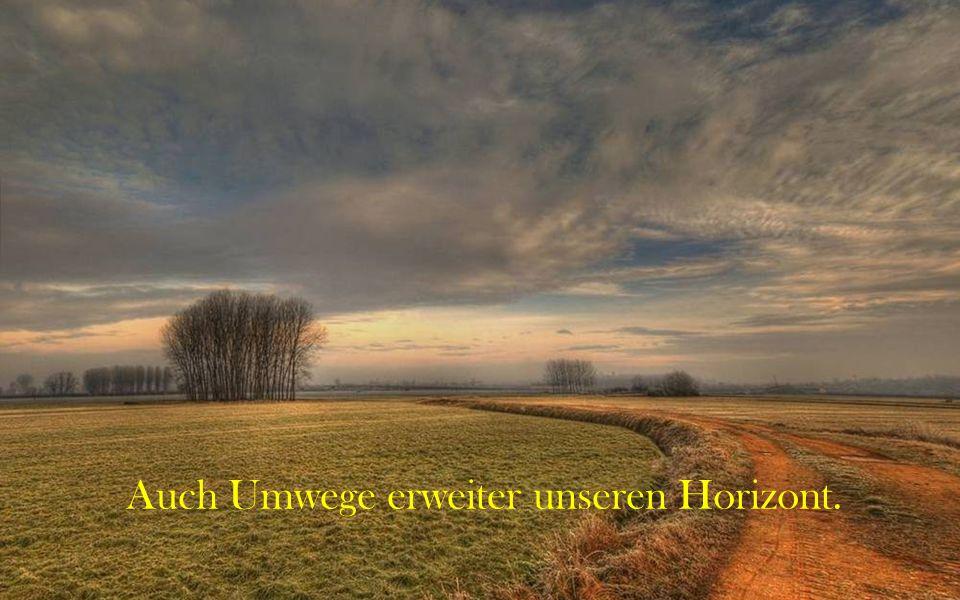 Wenn man einen falschen Weg einschlägt, verirrt man sich umso mehr, je schneller man geht.