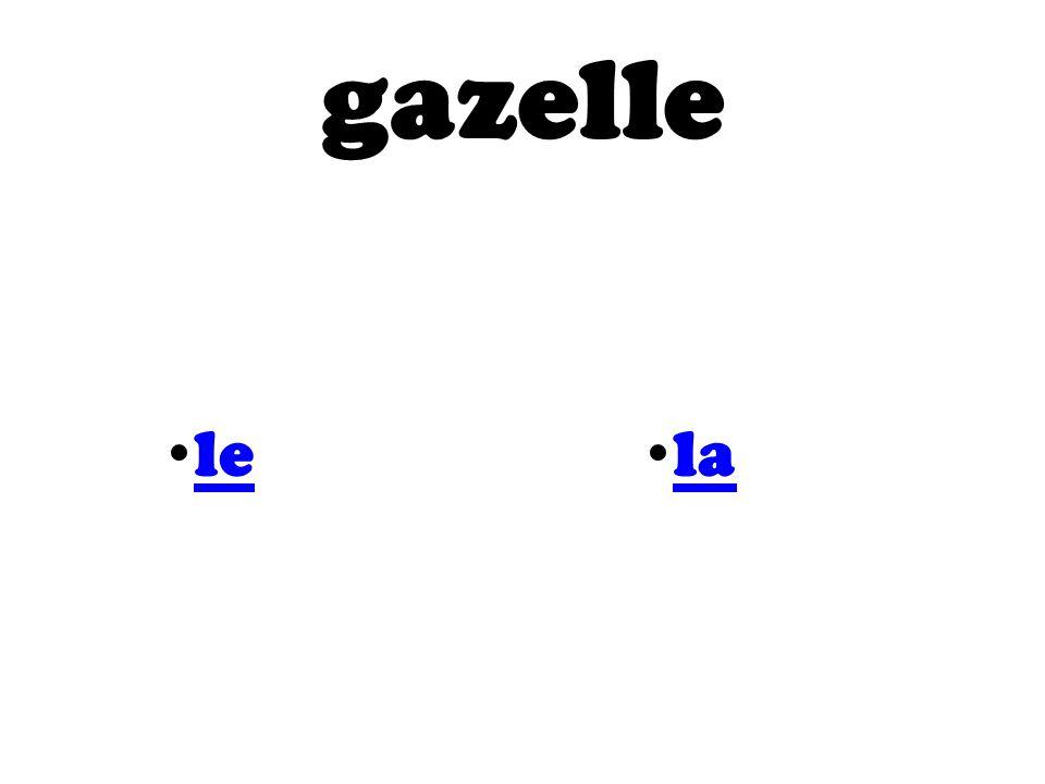 gazelle le la