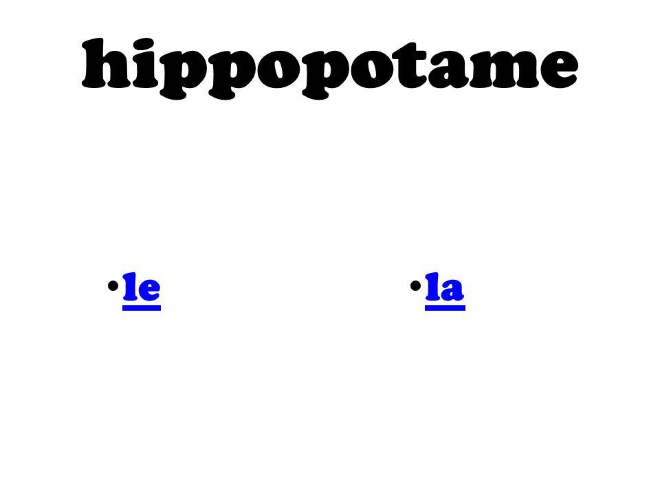 hippopotame le la