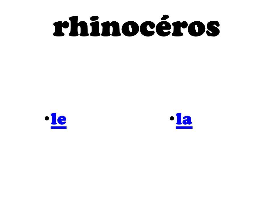 rhinocéros le la