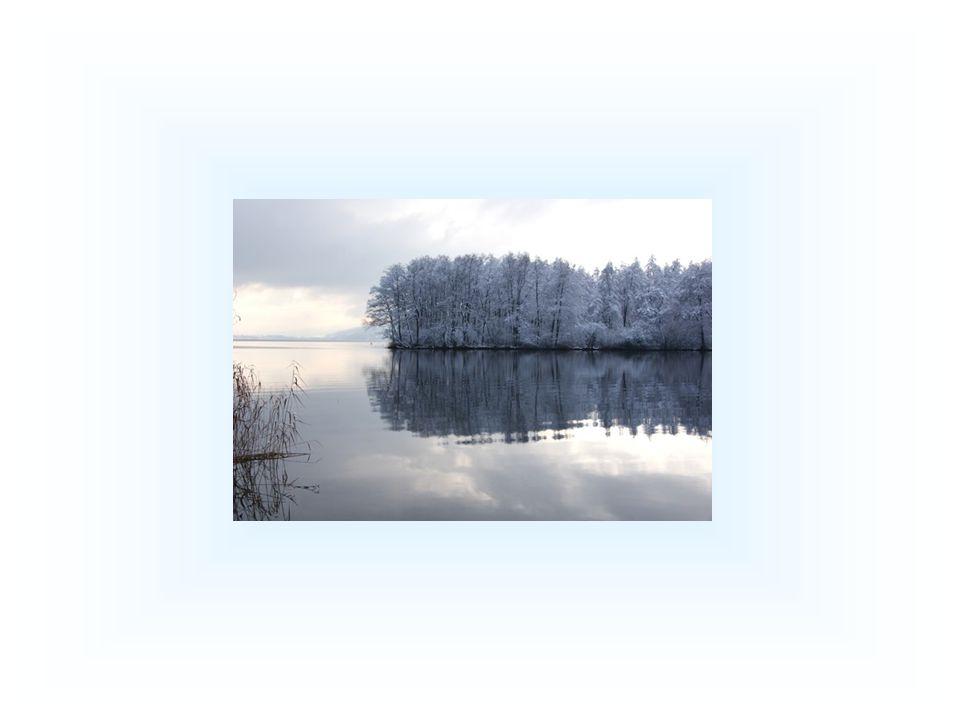"""Das Wasser antwortete: """"Das Leben ist Fließen."""
