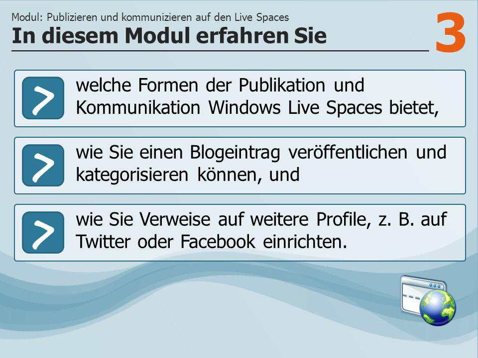 3 >> wie Sie einen Blogeintrag veröffentlichen und kategorisieren können, und wie Sie Verweise auf weitere Profile, z.