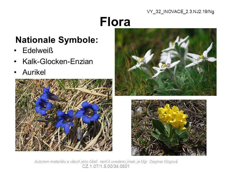 Flora Nationale Symbole: Edelweiß Kalk-Glocken-Enzian Aurikel VY_32_INOVACE_2.3.NJ2.19/Ng Autorem materiálu a všech jeho částí, není-li uvedeno jinak,