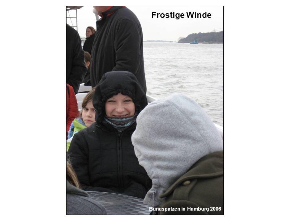 Frostige Winde