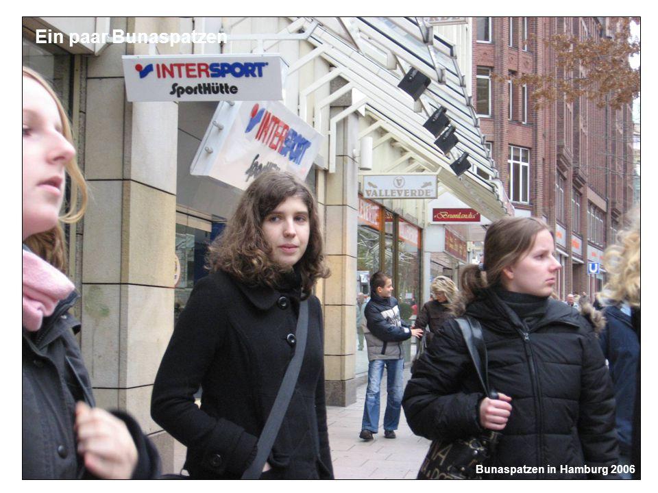 Bunaspatzen in Hamburg 2006 Ein paar Bunaspatzen
