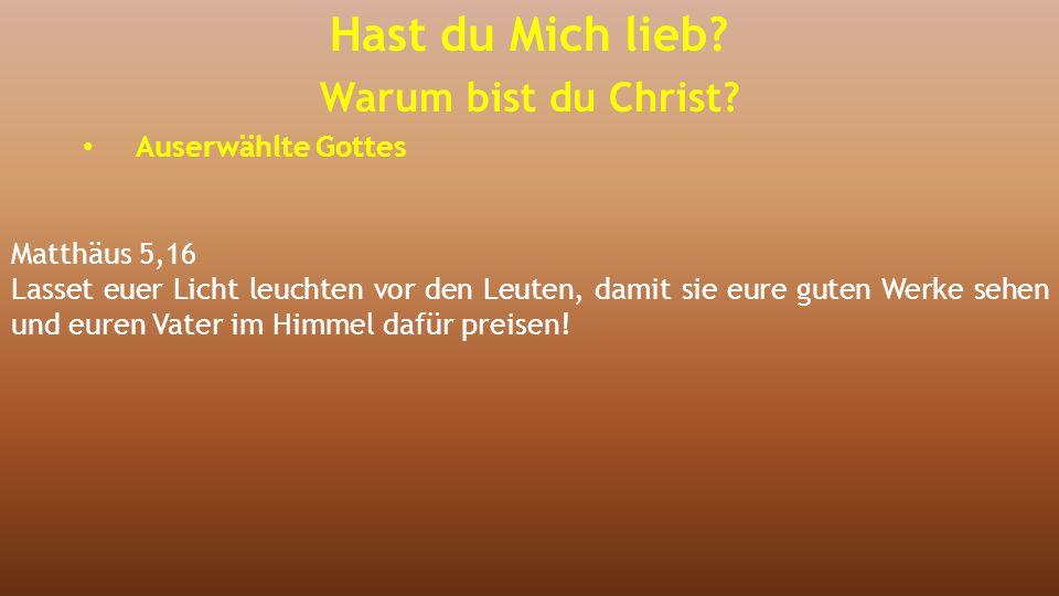 Matthäus 5,16 Lasset euer Licht leuchten vor den Leuten, damit sie eure guten Werke sehen und euren Vater im Himmel dafür preisen! Hast du Mich lieb?