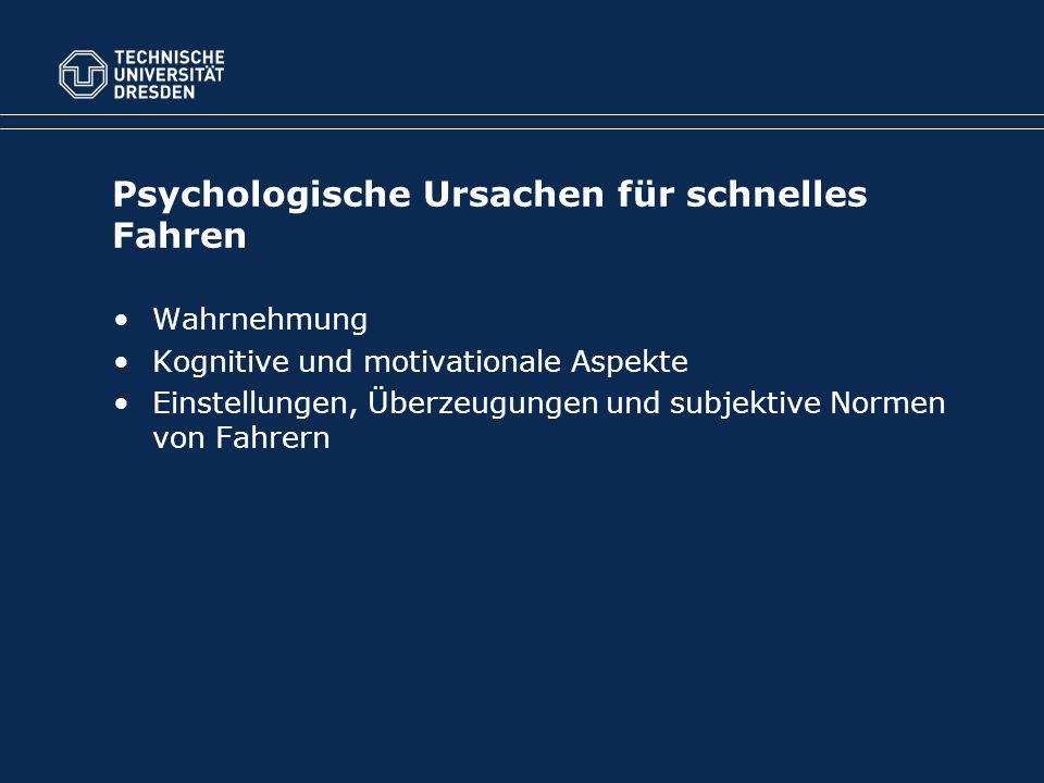 Psychologische Ursachen für schnelles Fahren Wahrnehmung Kognitive und motivationale Aspekte Einstellungen, Überzeugungen und subjektive Normen von Fahrern