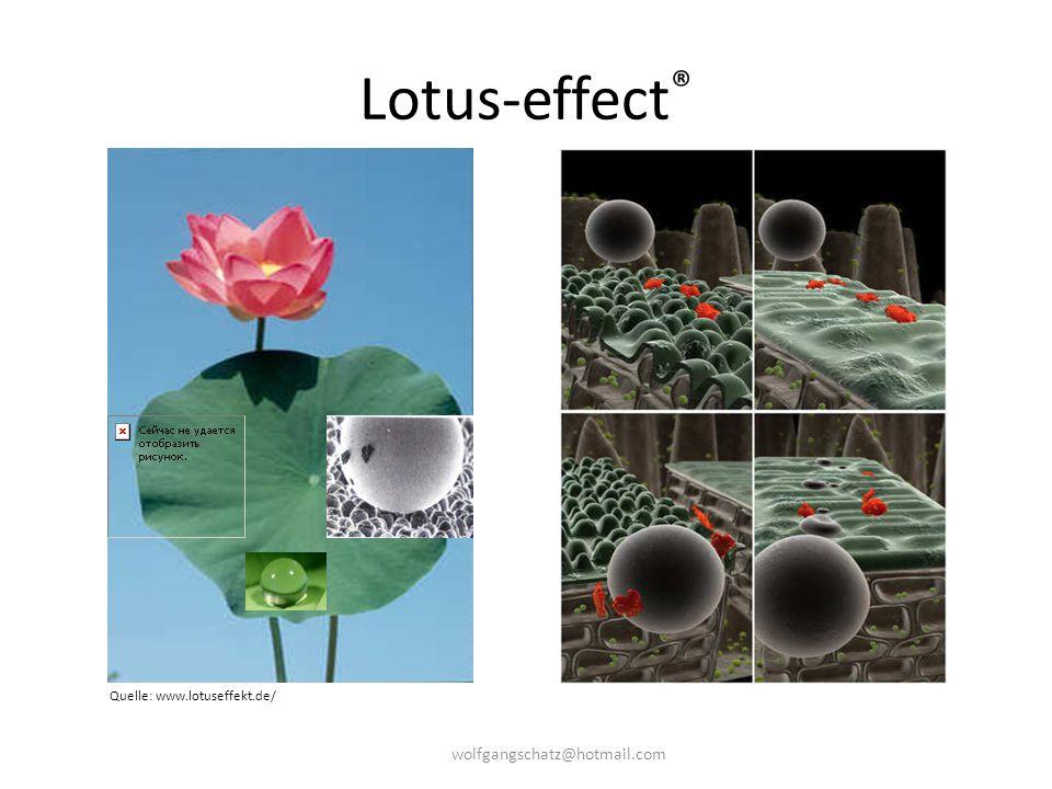 Lotus-effect ® Quelle: www.lotuseffekt.de/ wolfgangschatz@hotmail.com