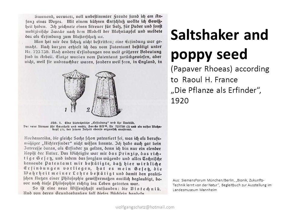 """Saltshaker and poppy seed (Papaver Rhoeas) according to Raoul H. France """"Die Pflanze als Erfinder"""", 1920 Aus: SiemensForum München/Berlin, """"Bionik, Zu"""