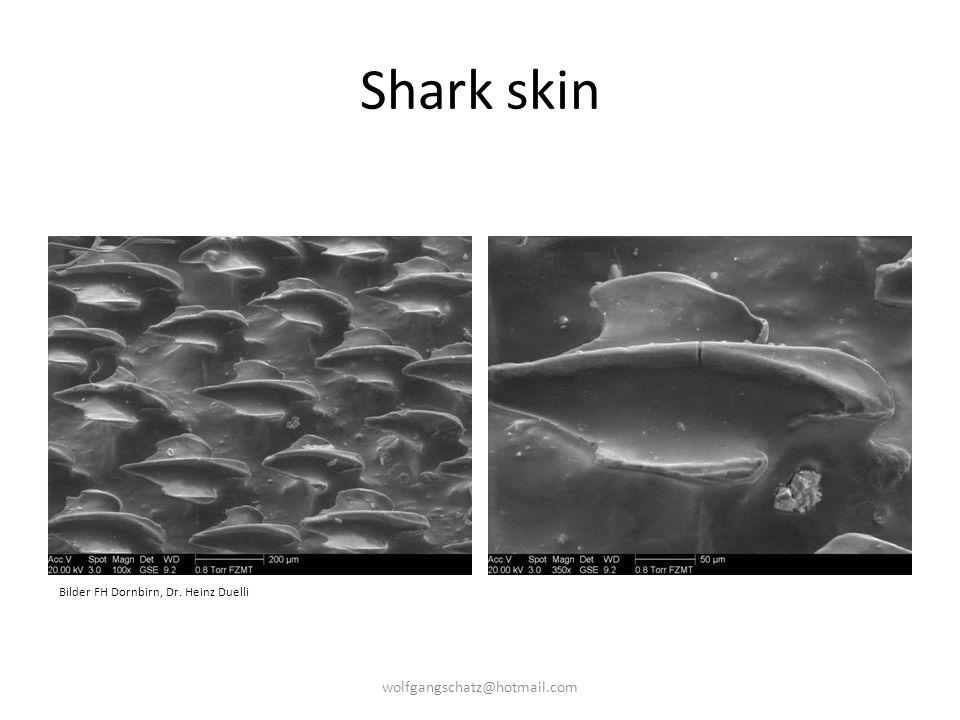 Shark skin Bilder FH Dornbirn, Dr. Heinz Duelli wolfgangschatz@hotmail.com