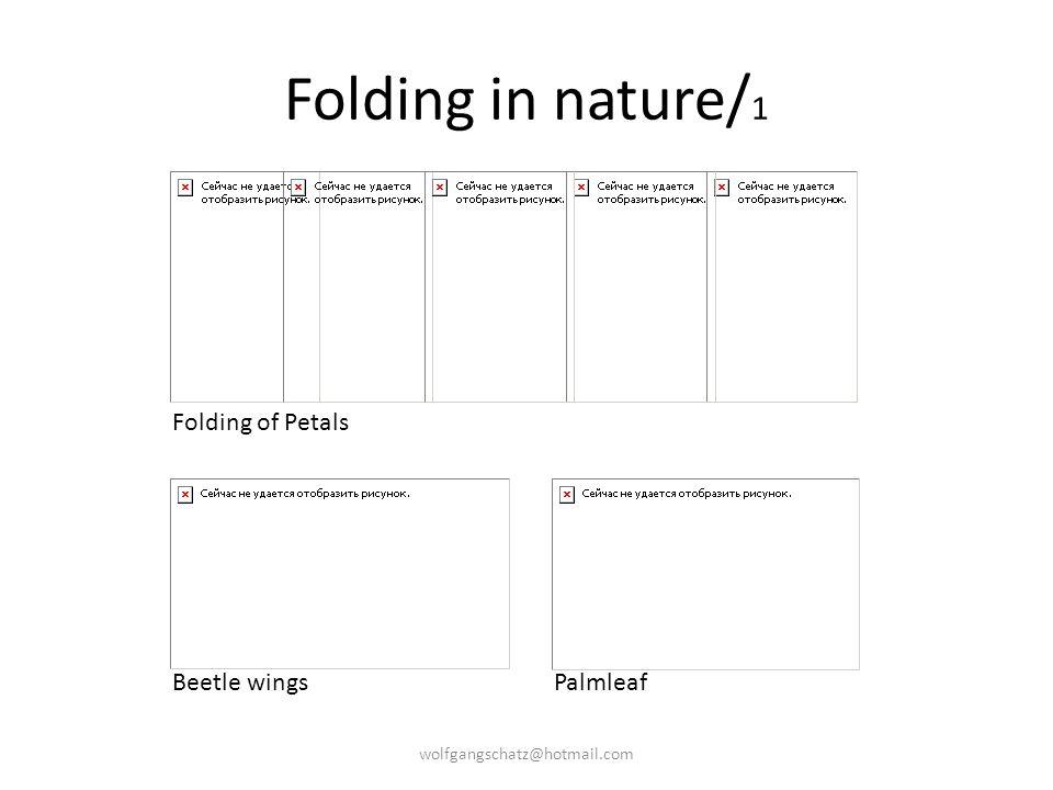 Folding in nature/ 1 Folding of Petals Beetle wingsPalmleaf wolfgangschatz@hotmail.com