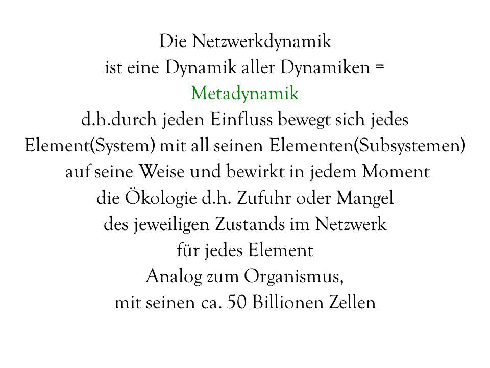 Die Netzwerkdynamik ist eine Dynamik aller Dynamiken = Metadynamik d.h.durch jeden Einfluss bewegt sich jedes Element(System) mit all seinen Elementen
