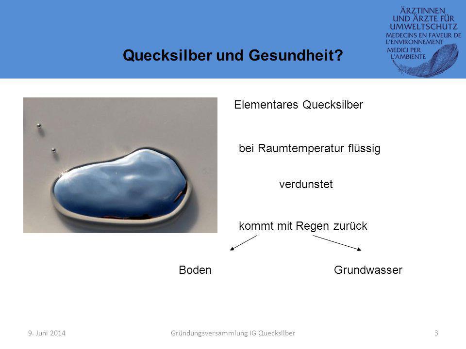 9.Juni 2014Gründungsversammlung IG Quecksilber3 Quecksilber und Gesundheit.