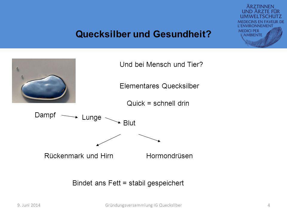 9.Juni 2014Gründungsversammlung IG Quecksilber4 Quecksilber und Gesundheit.
