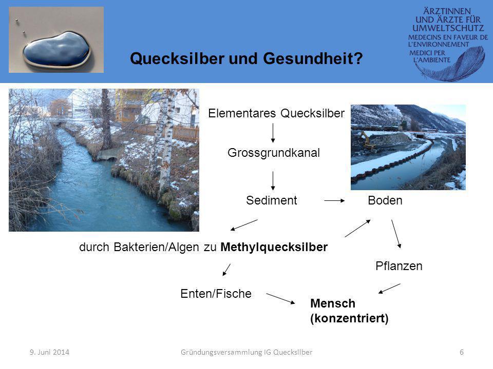 9. Juni 2014Gründungsversammlung IG Quecksilber6 Quecksilber und Gesundheit? Grossgrundkanal Sediment durch Bakterien/Algen zu Methylquecksilber Boden