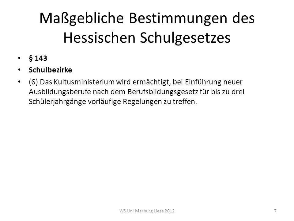 Betroffene und Akteure der Schulentwicklungsplanung Schüler Eltern Lehrer Hessisches Kultusministerium Schulträger Mandatsträger in den Kreistagen und Stadt- und Gemeindeparlamenten Städte und Gemeinden Schulkommission Staatlichen Schulämter WS Uni Marburg Liese 201228