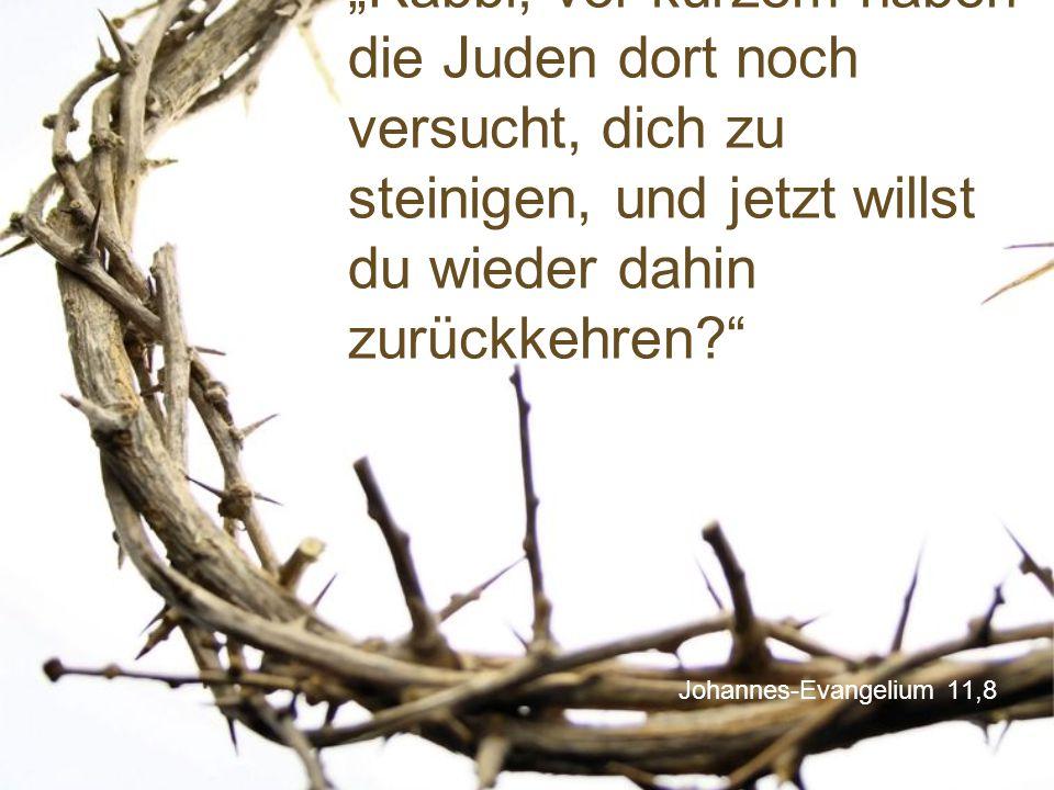 """Johannes-Evangelium 11,8 """"Rabbi, vor kurzem haben die Juden dort noch versucht, dich zu steinigen, und jetzt willst du wieder dahin zurückkehren?"""""""