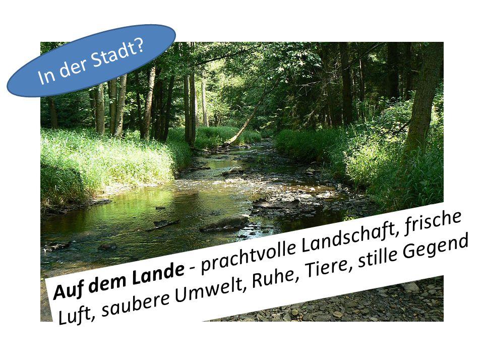 Auf dem Lande - prachtvolle Landschaft, frische Luft, saubere Umwelt, Ruhe, Tiere, stille Gegend In der Stadt