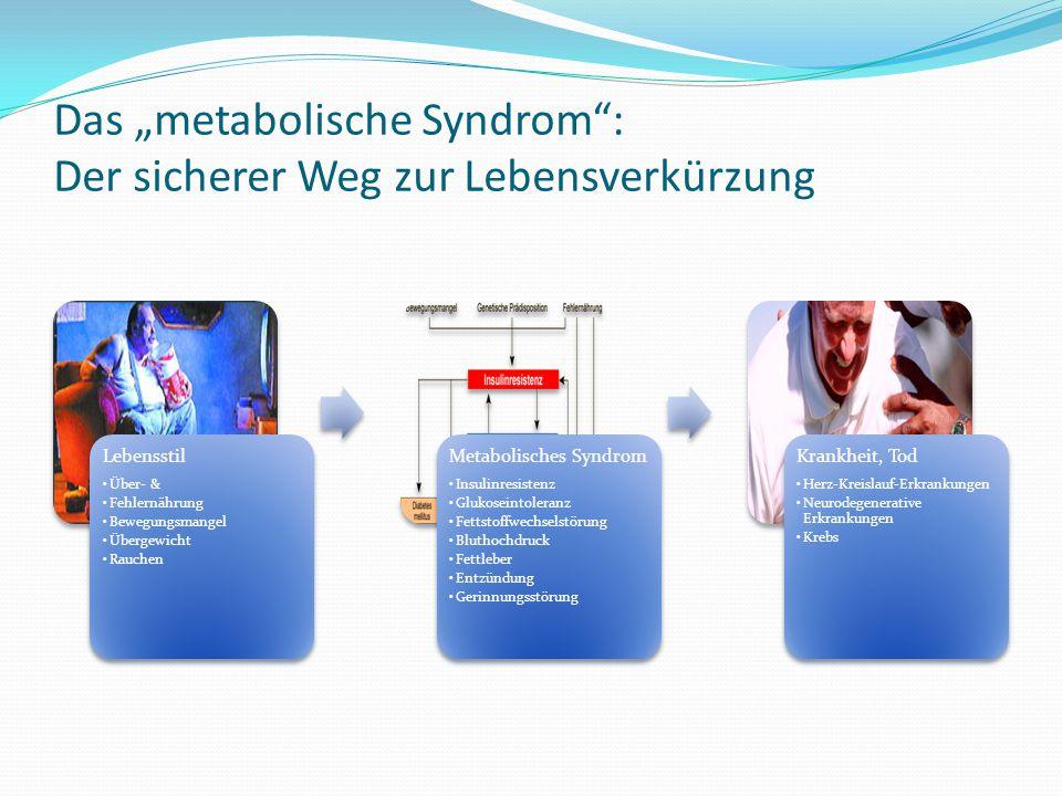 """Das """"metabolische Syndrom"""": Der sicherer Weg zur Lebensverkürzung Lebensstil Über- & Fehlernährung Bewegungsmangel Übergewicht Rauchen Metabolisches S"""