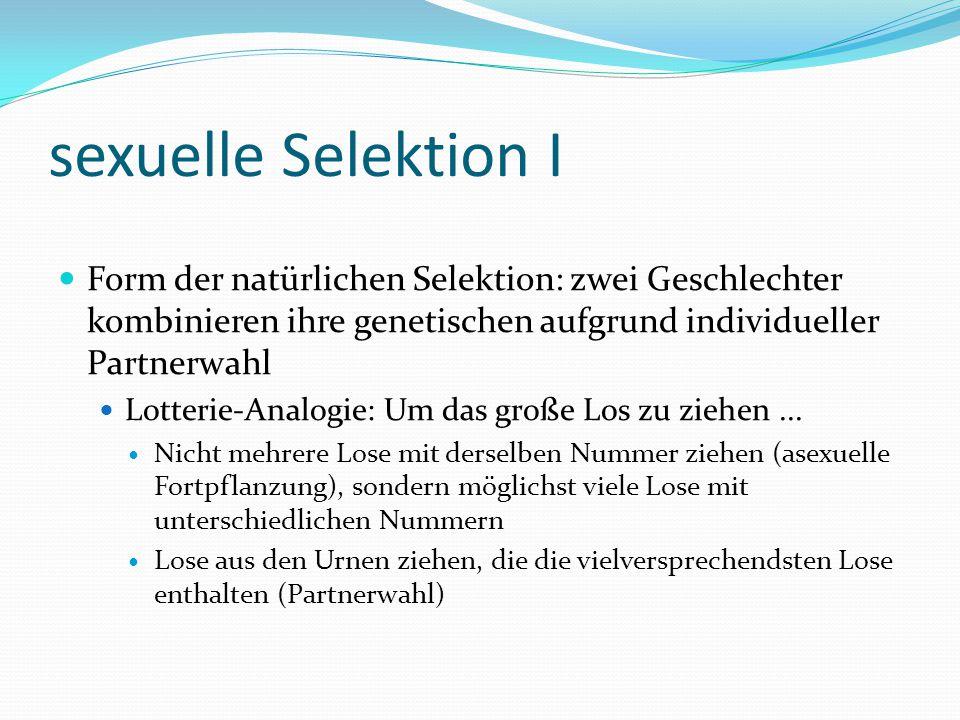 sexuelle Selektion I Form der natürlichen Selektion: zwei Geschlechter kombinieren ihre genetischen aufgrund individueller Partnerwahl Lotterie-Analog