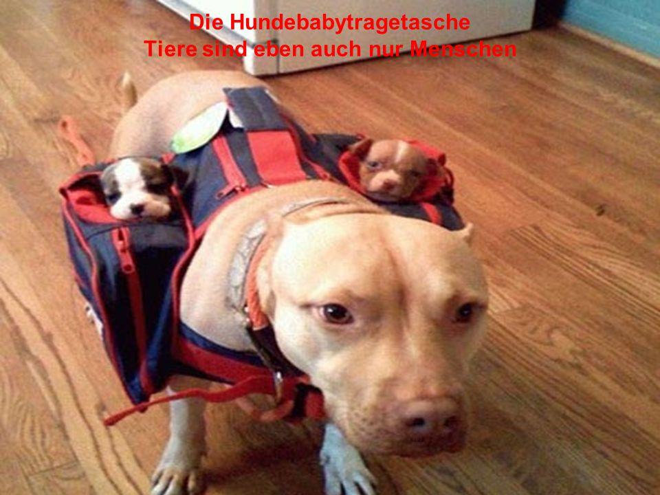 Die Hundebabytragetasche Tiere sind eben auch nur Menschen