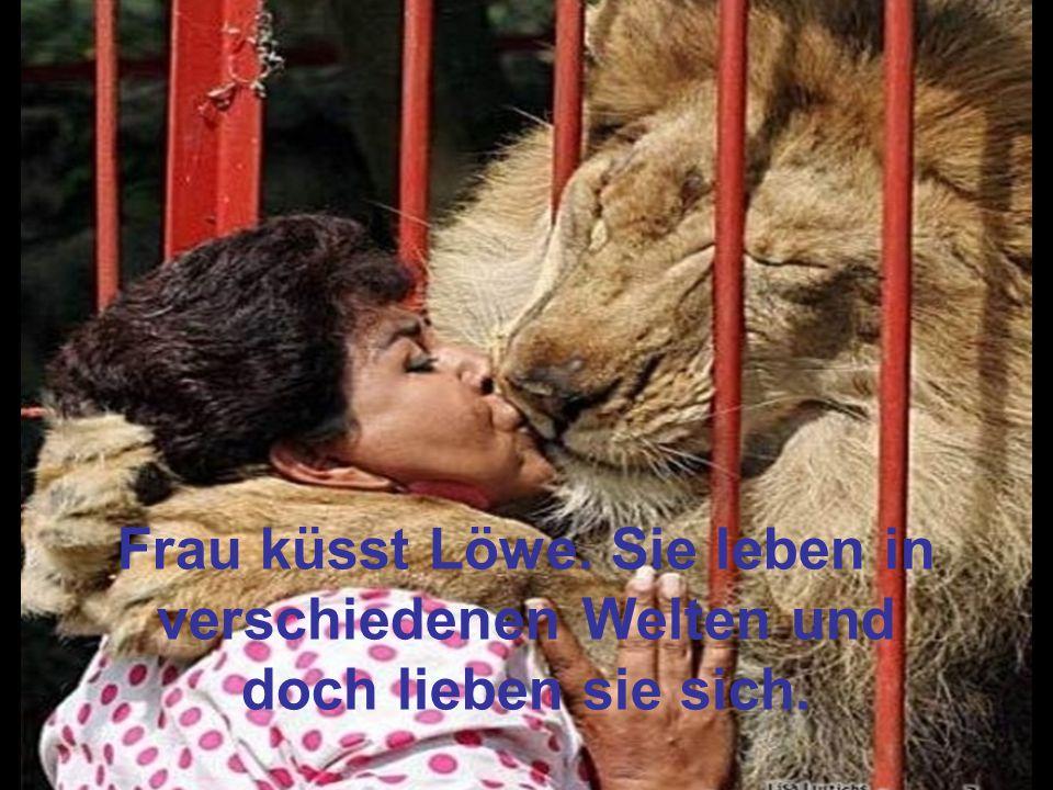 Frau küsst Löwe. Sie leben in verschiedenen Welten und doch lieben sie sich.