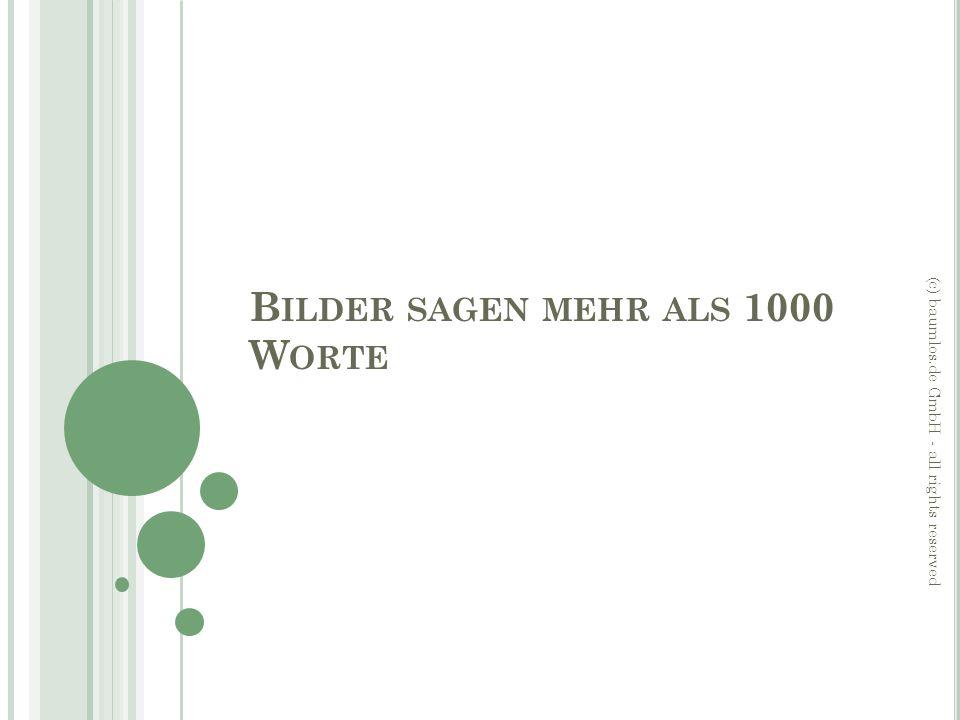 B ILDER SAGEN MEHR ALS 1000 W ORTE (c) baumlos.de GmbH - all rights reserved