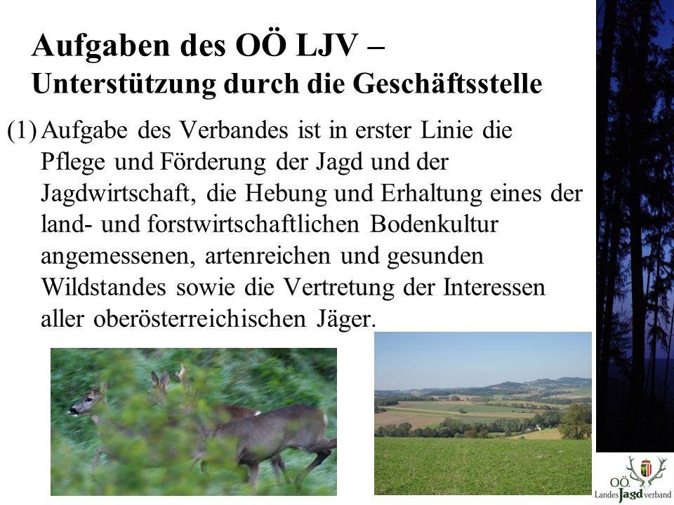 (1)Aufgabe des Verbandes ist in erster Linie die Pflege und Förderung der Jagd und der Jagdwirtschaft, die Hebung und Erhaltung eines der land- und forstwirtschaftlichen Bodenkultur angemessenen, artenreichen und gesunden Wildstandes sowie die Vertretung der Interessen aller oberösterreichischen Jäger.