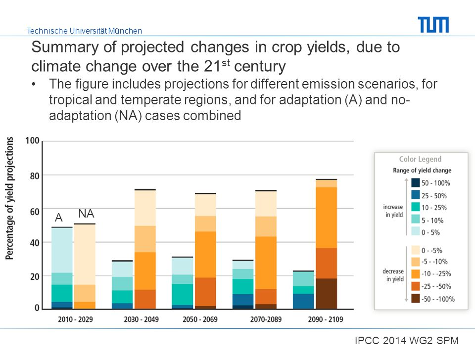 Technische Universität München Summary of projected changes in crop yields, due to climate change over the 21 st century The figure includes projectio