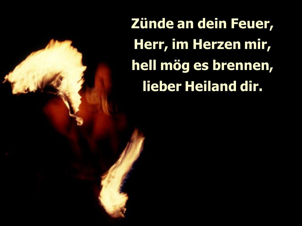 Zünde an dein Feuer, Herr, im Herzen mir, hell mög es brennen, lieber Heiland dir.