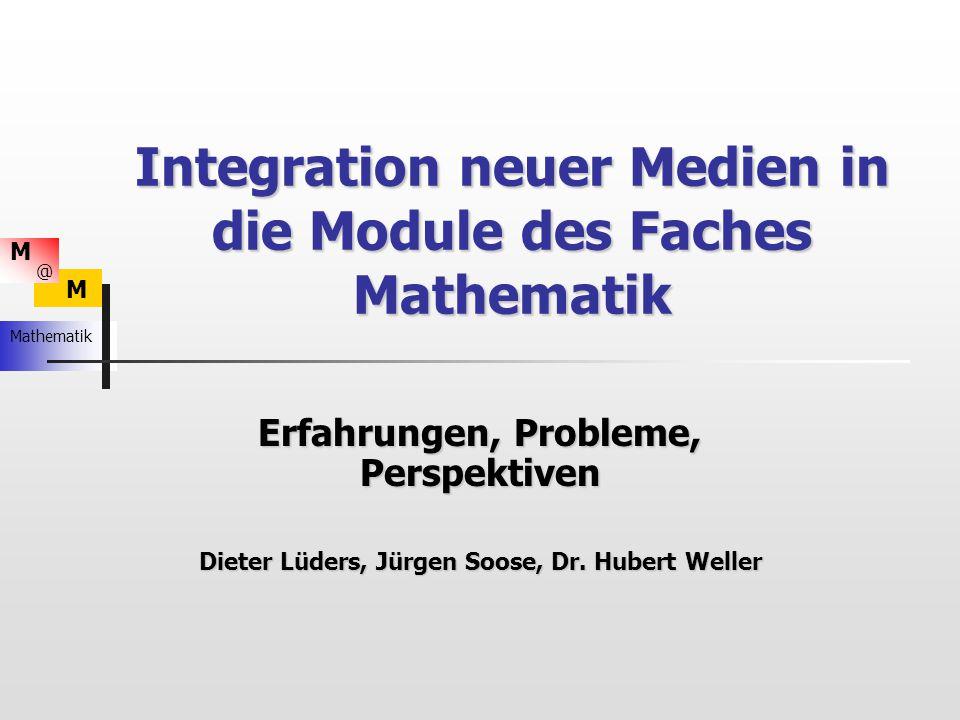 M M Mathematik @ Erweiterungen Metaplanmethode - Herbstlaub: Metaplanmethode - Herbstlaub: Welche Aspekte (Probleme) halten Sie im Zusammenhang mit neuen Medien in den Fachmodulen für wichtig.