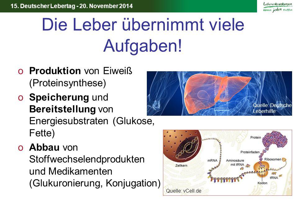 15. Deutscher Lebertag - 20. November 2014 Die Leber übernimmt viele Aufgaben! oProduktion von Eiweiß (Proteinsynthese) oSpeicherung und Bereitstellun